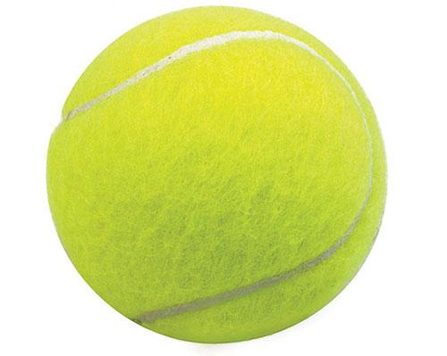 网球ZRXDW—10